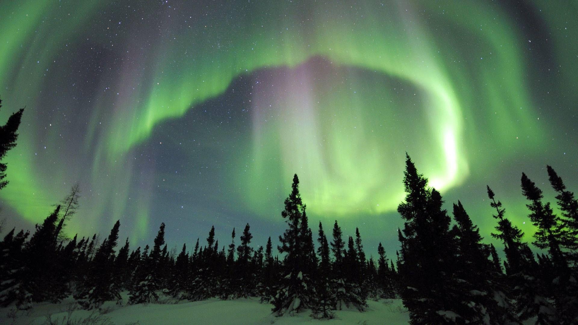 Fairbanks Alaska Northern Lights while soaking in natural hot