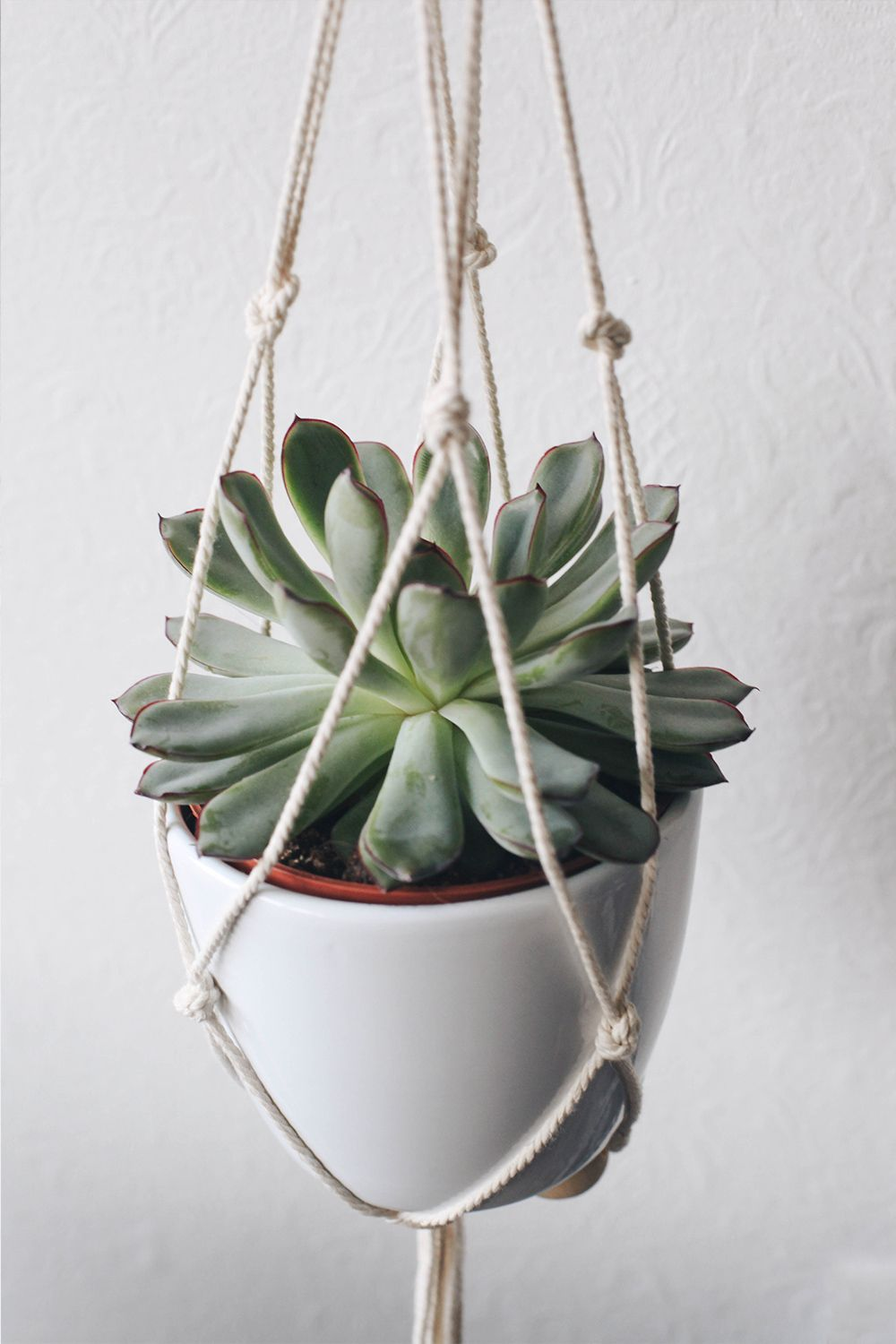 Diy suspension macram pour plante moodfeather blog blog moodfeather pinterest - Faire macrame suspension ...