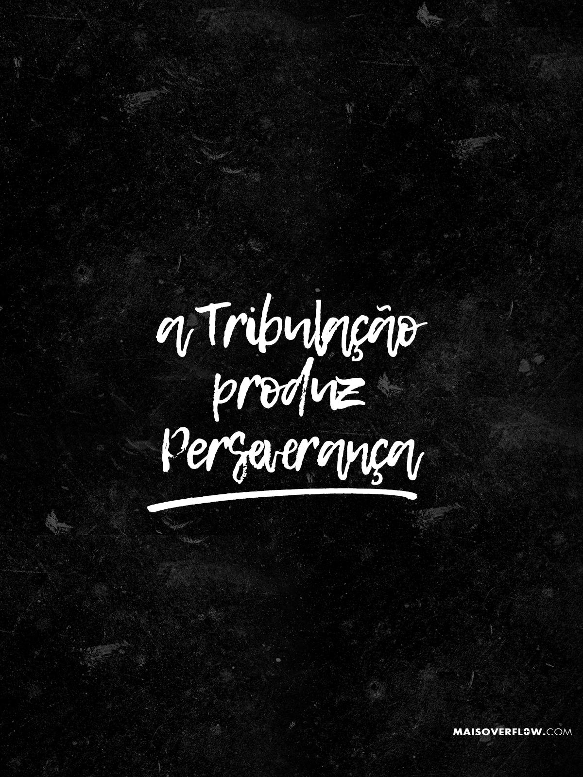 A Tribulação Produz Perseverança Romanos 53