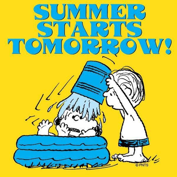 Peanuts Characters Snoopy Charlie Brown Summer Time Happy Seasons Holidays Friends Quotes