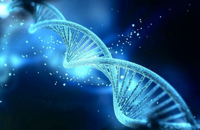 What is 12 Strand DNA Activation