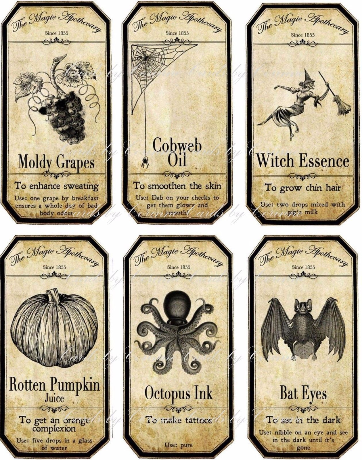 Details About Halloween Apothecary Bottle Label Stickers