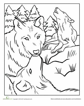 Pin By Vanessa Foy On Coloring Horse Coloring Pages