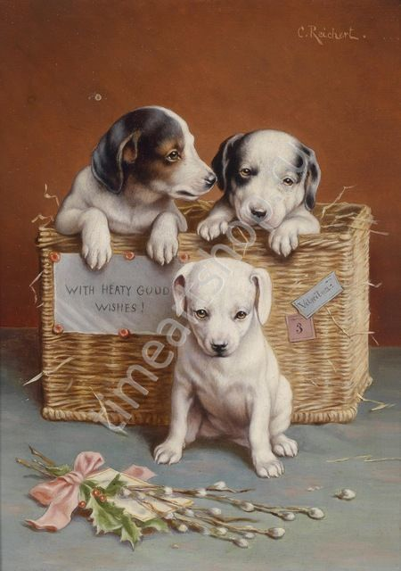 щенки в корзине, художник Карл Райхерт, картина раскраска ...