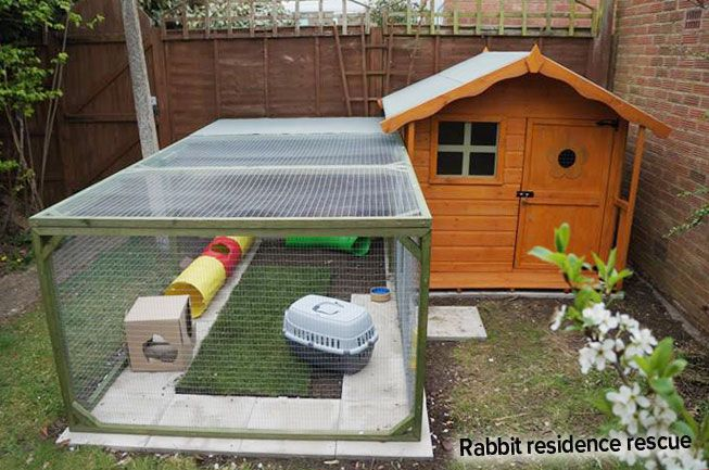 Ideal Rabbit Homes Fantastic Creative Ideas Rabbits