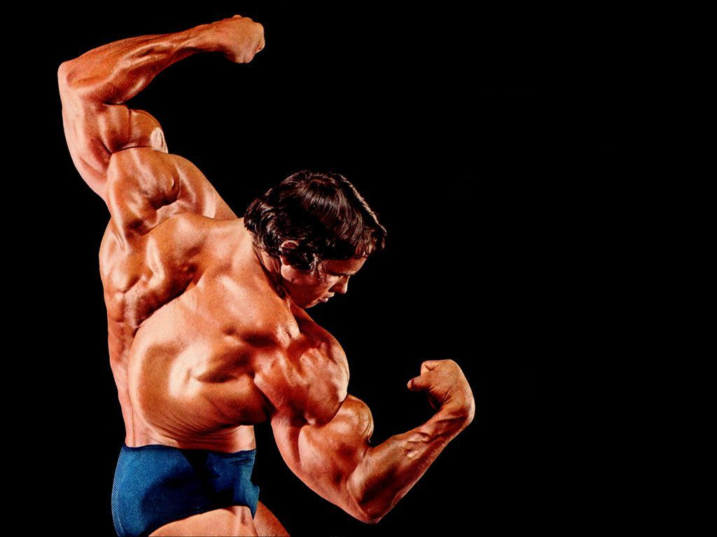 Bodybuilding Wallpapers Hd 2016 Wallpaper Cave Golden Age Of