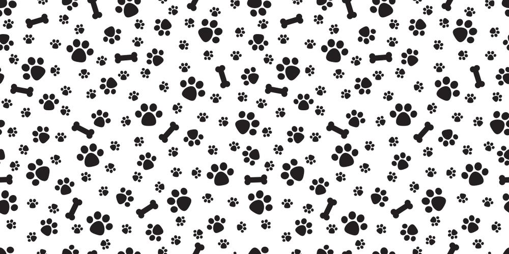25++ Bone pattern info