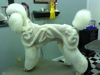 Now thats a groomers master piece poodle clips pinterest dog winobraniefo Image collections