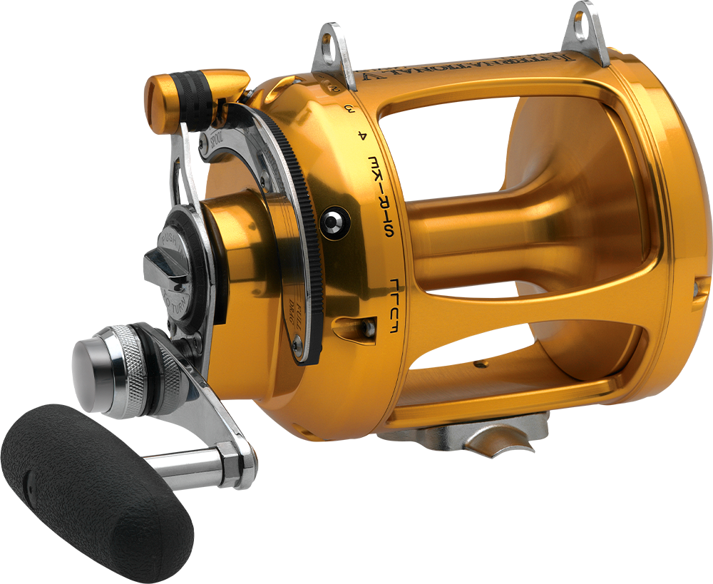 Recommended] Best Spinning Reel - 2019 Reviewed By Expert
