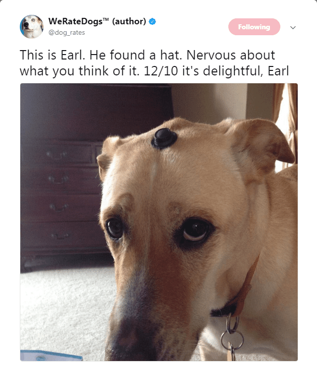 24 H*ckin' Funny Tweets From The We Rate Dogs Twitter Feed