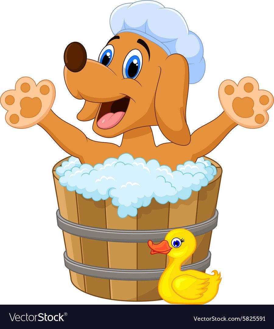 Cartoon Dog Bathing In The Dog Bathing Vector Image On Perro De