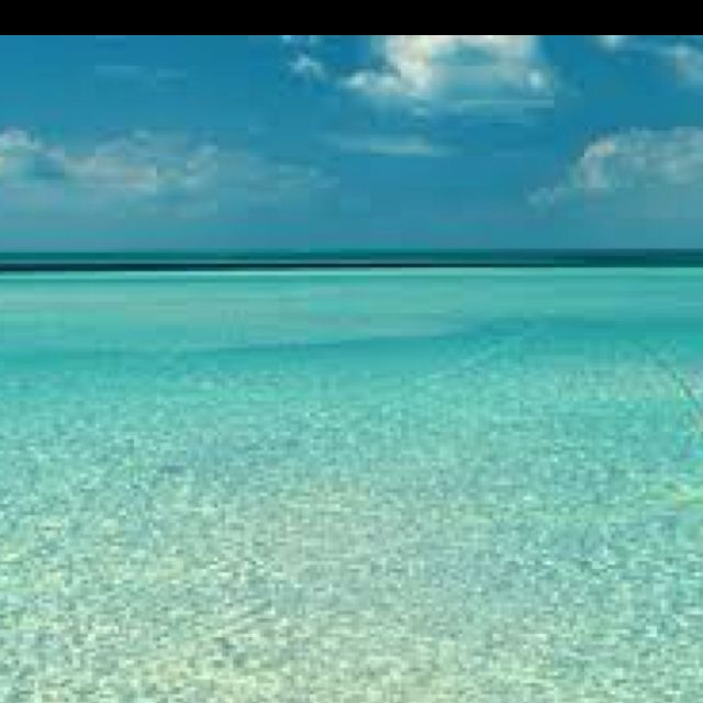 Best Places In Florida For Fishing: Key West, FL CLEAR WATER!!