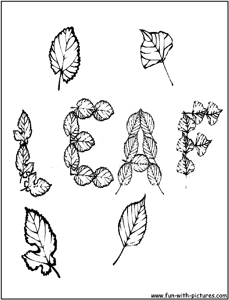 Autumn Leaves Coloring Page | Crafty Leaves | Pinterest | Autumn ...