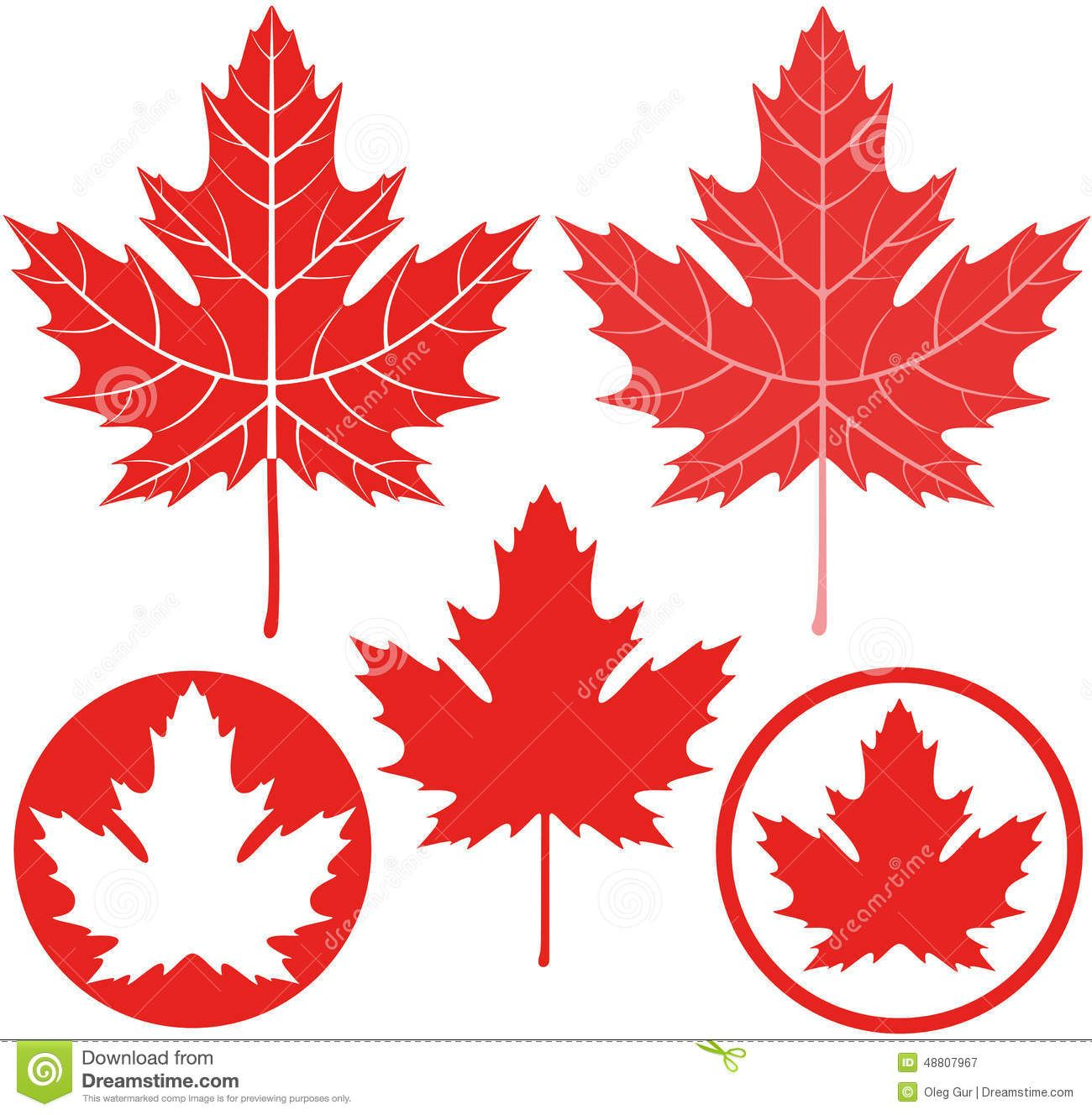 Maple Leaf Yahoo Search Results Yahoo Canada Image Search Results Leaf Illustration Free Vector Graphics Leaves Vector