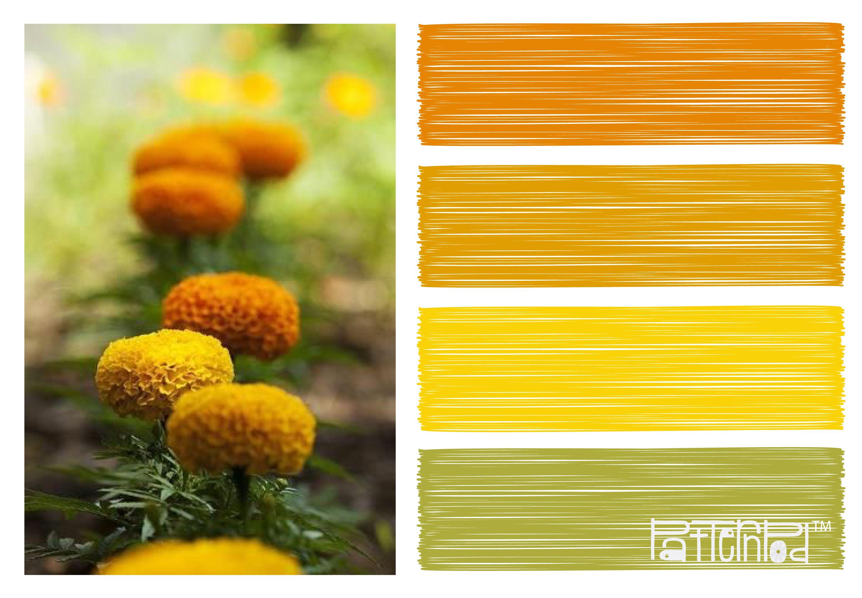 #patternpod #color #orange #green #flowers