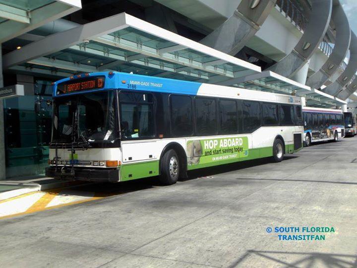 pinpaul kimo mcgregor on bus   bus terminal, downtown