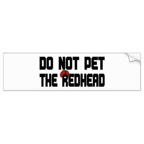 Do not pet the redhead w wig bumper sticker redheads and wig