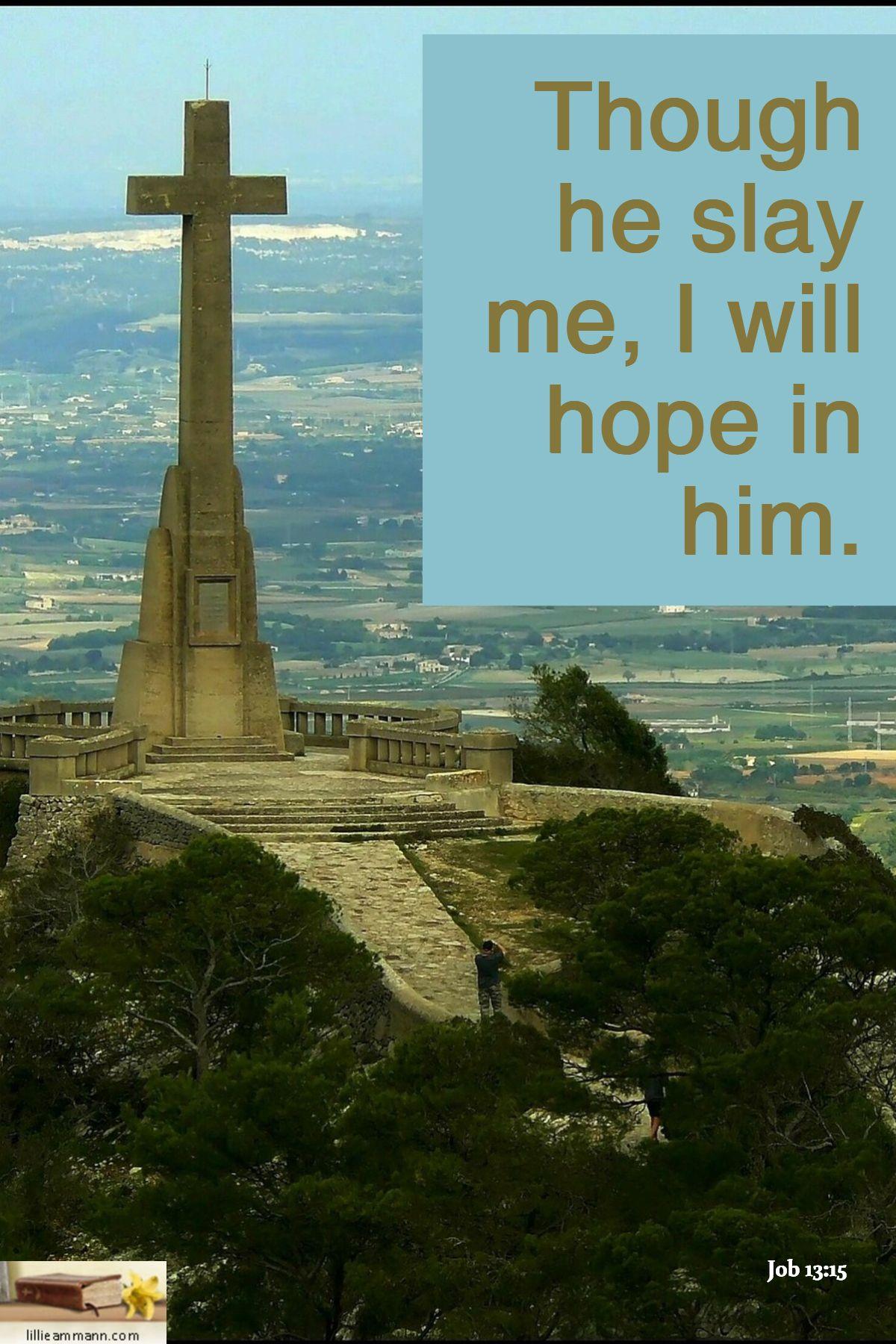Job 1315 though he slay me i will hope in him slay