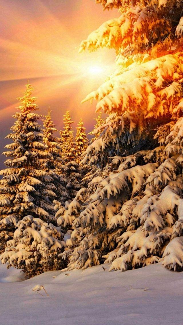 Зима картинки вертикальные на телефон