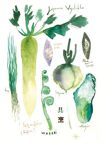 Japanese vegetables, 8X10 watercolor painting print, Kitchen art, Asian food poster, Green wall decor