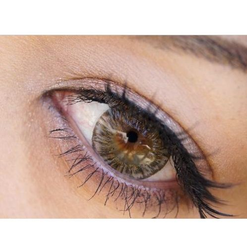 shop our large selection of brown hazel color contact lenses from luscious chocolate to - Colored Contacts Hazel