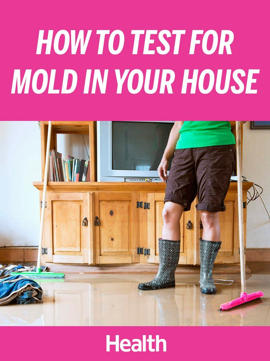 Our Guide To What Mold Looks And Smells Like How Test For Remove It From Your Home Health