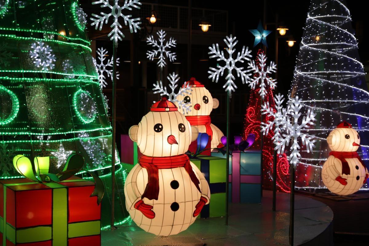 Houston Christmas Lights Holiday lights, Christmas