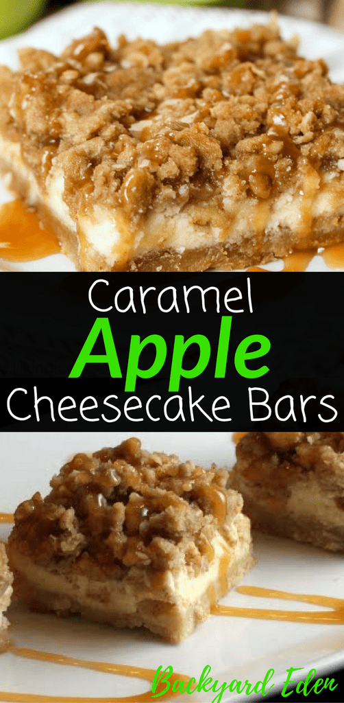 Caramel Apple Cheesecake Bars Recipe - Backyard Eden