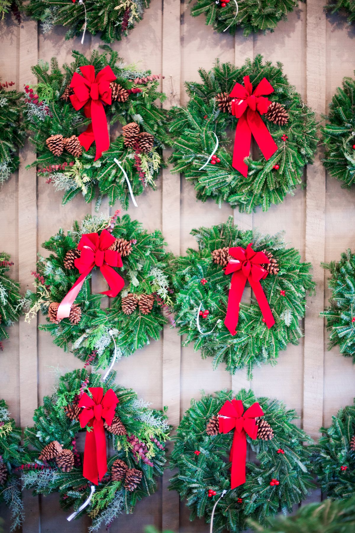 Scottsdale Farms Milton Ga Christmas Tree Farm Scottsdale Farms Holiday Inspiration