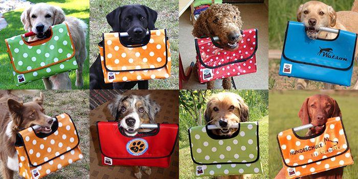 Die Ernl Tasche Ist Eine Speziell Fur Das Tragen In Der Hundeschnauze Entwickelte Tasche Perfekt Geeignet Zur Geistigen Und Korperlichen Hunde Schulhund Tiere