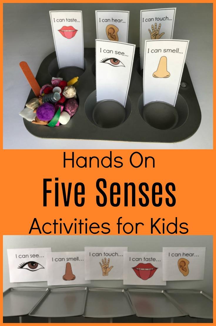 Exploring All 5 Senses In Preschool Sorting Activities And Books The Preschool Toolbox Blog Senses Preschool Senses Activities Preschool Science Activities [ 1105 x 735 Pixel ]