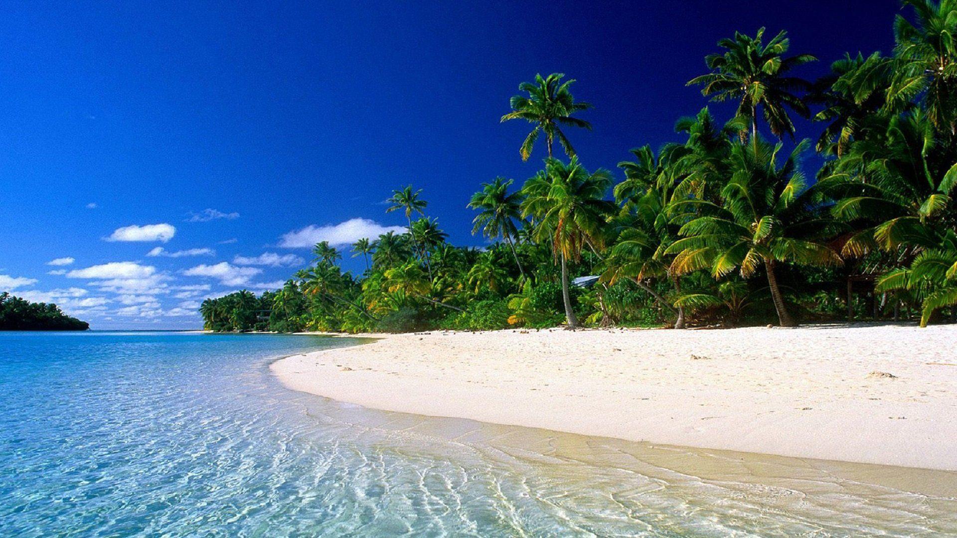 Dreamies De Strand Wallpaper Strandlandschaft Tropische Strande