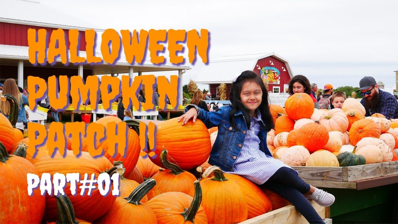 Where To Go For HALLOWEEN Pumpkin Patch Adventure *Part 1