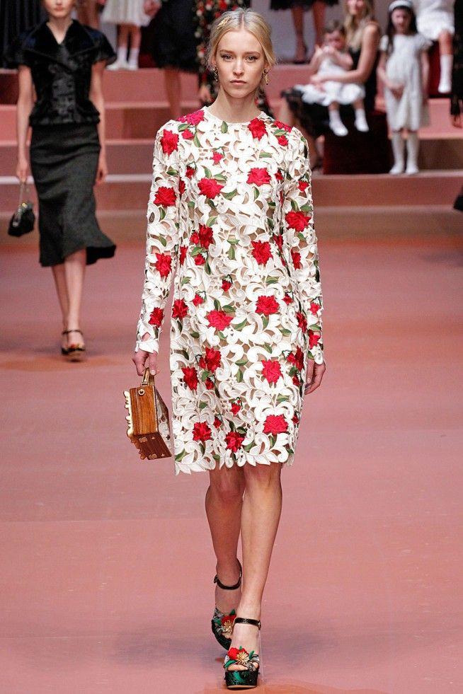 6ee25e4c70f Coleção    Dolce   Gabbana