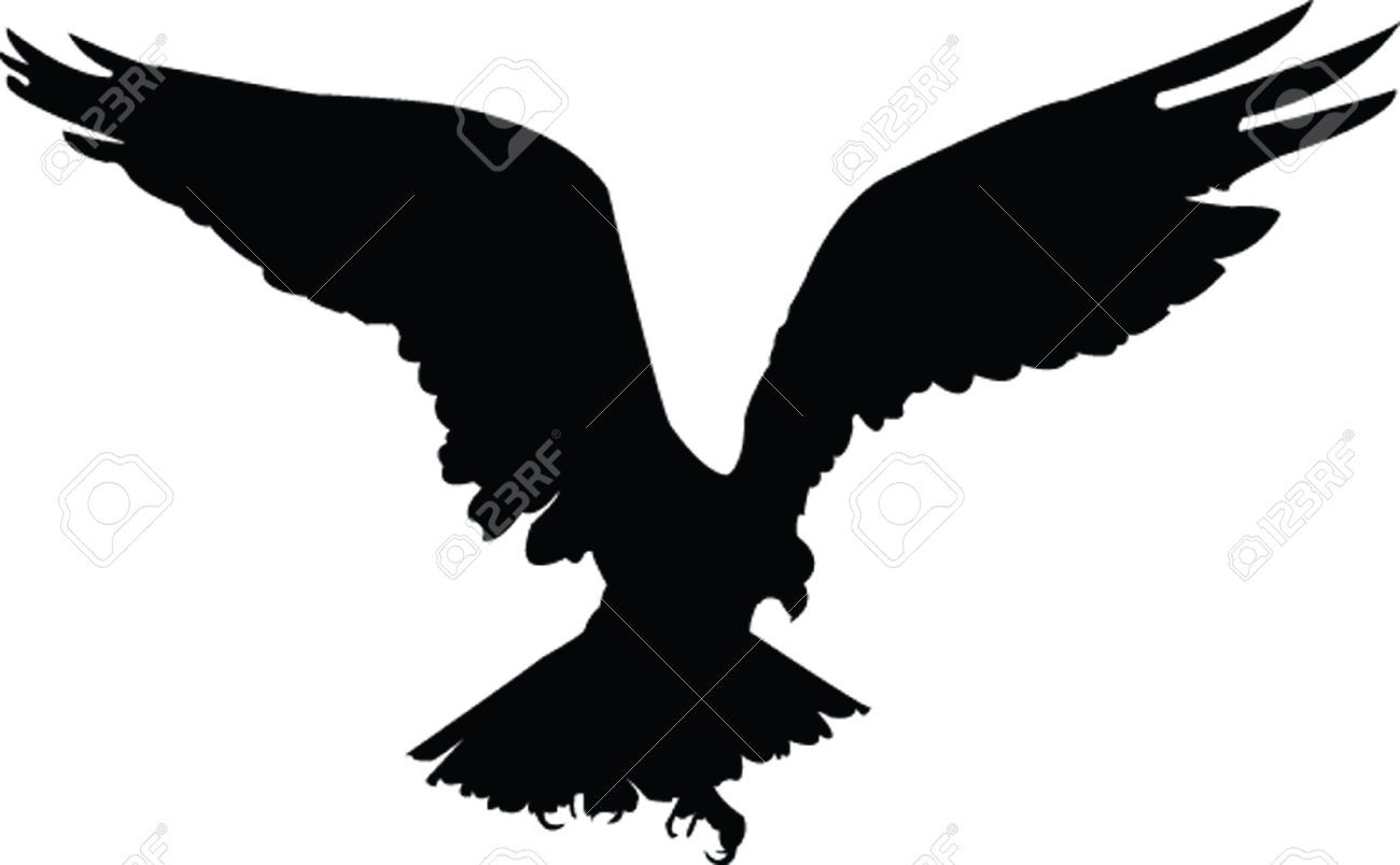 5248835-eagle-vector-Stock-Vector-eagle-hawk-silhouette ...