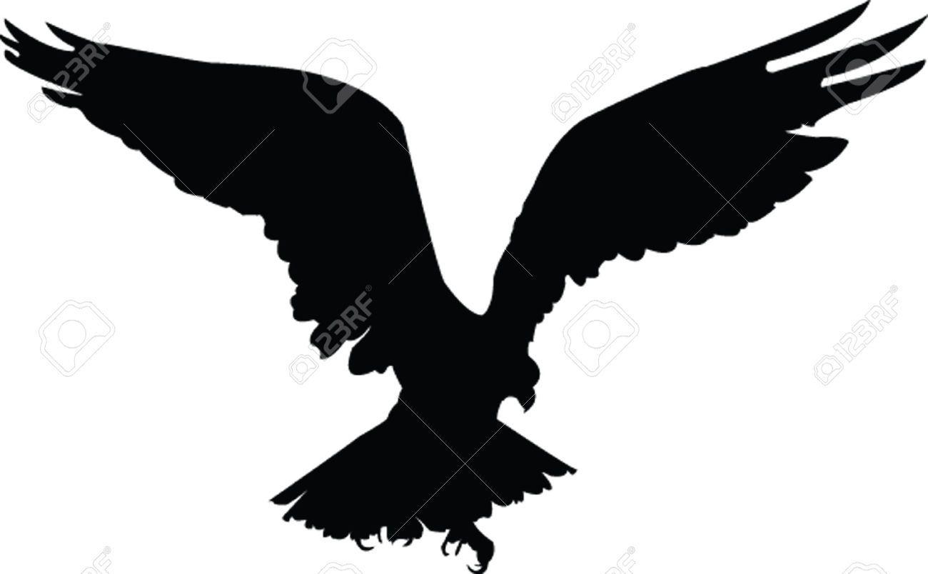 5248835-eagle-vector-Stock-Vector-eagle-hawk-silhouette ... Flying Hawk Silhouette Vector