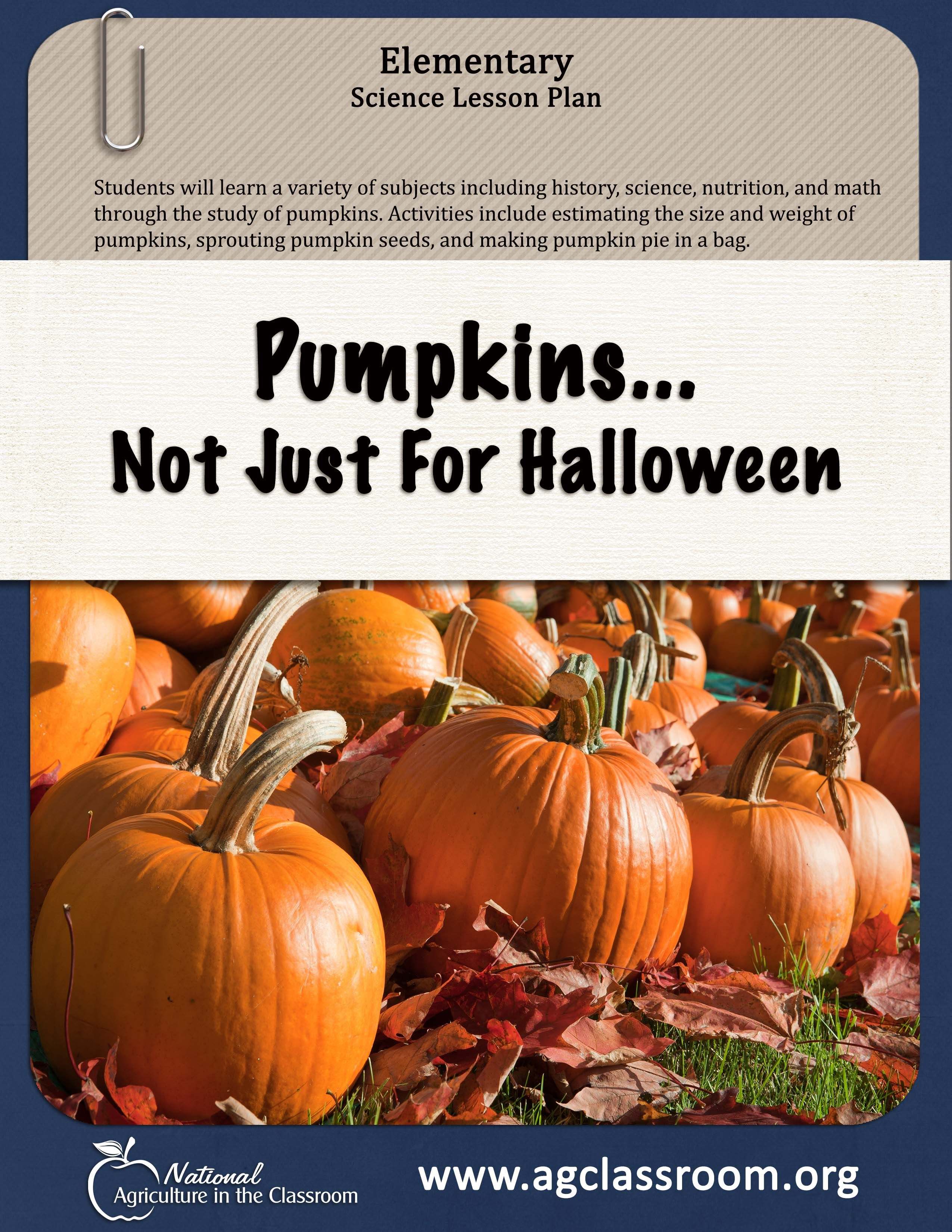 Elementary Science Lesson Teaching About Pumpkins And All