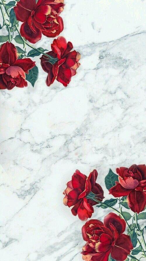 Marbled Rose Wallpaper Fond D écran Téléphone Fond Ecran