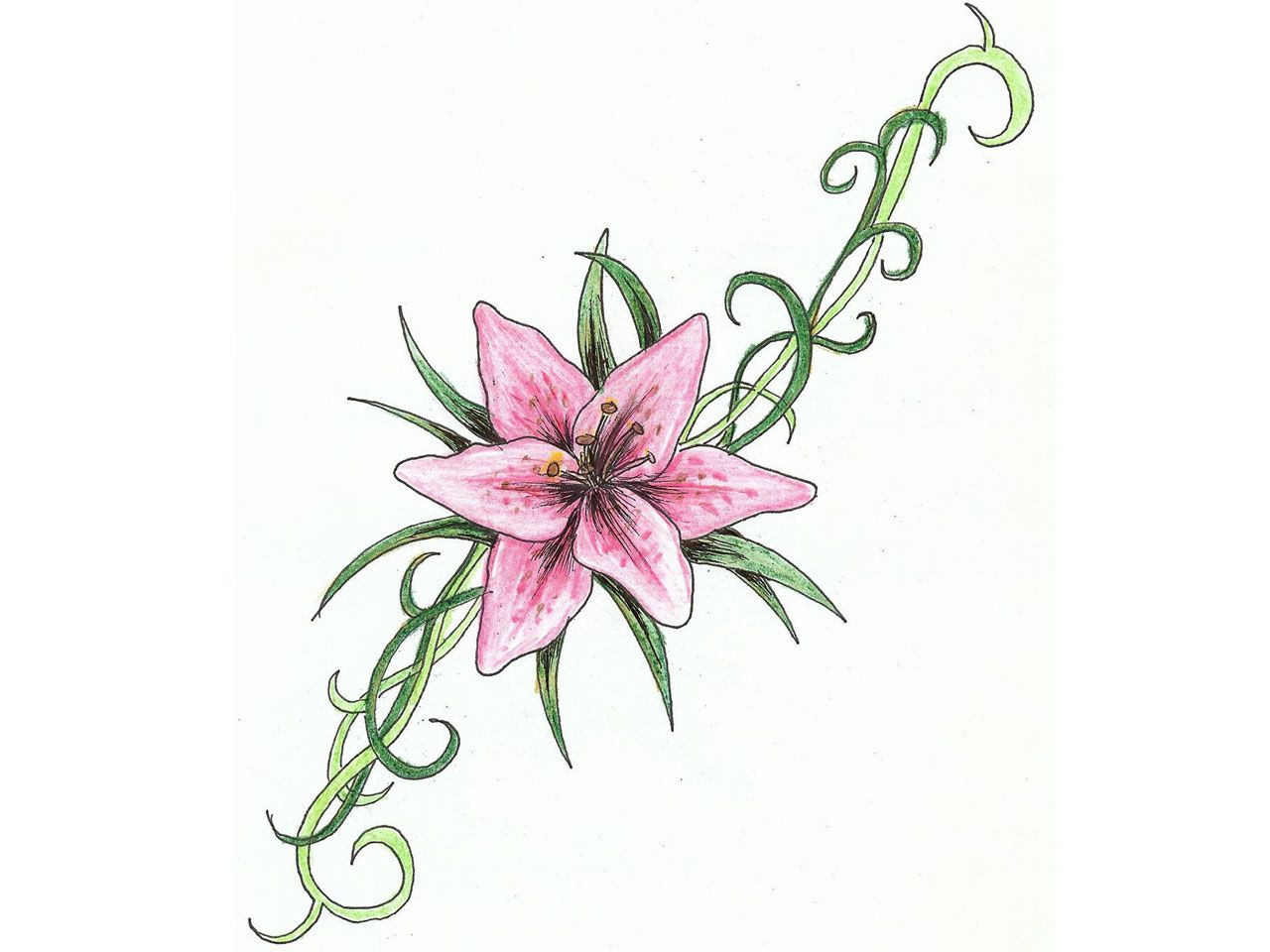 Pink lily flower tattoos my style pinterest free design lily pink lily flower tattoos izmirmasajfo