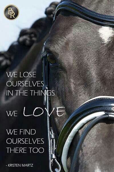 Image result for we lose ourselves in the things we love horse