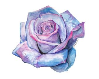 Blue And Pink Watercolor Rose With Images Blue Rose Tattoos