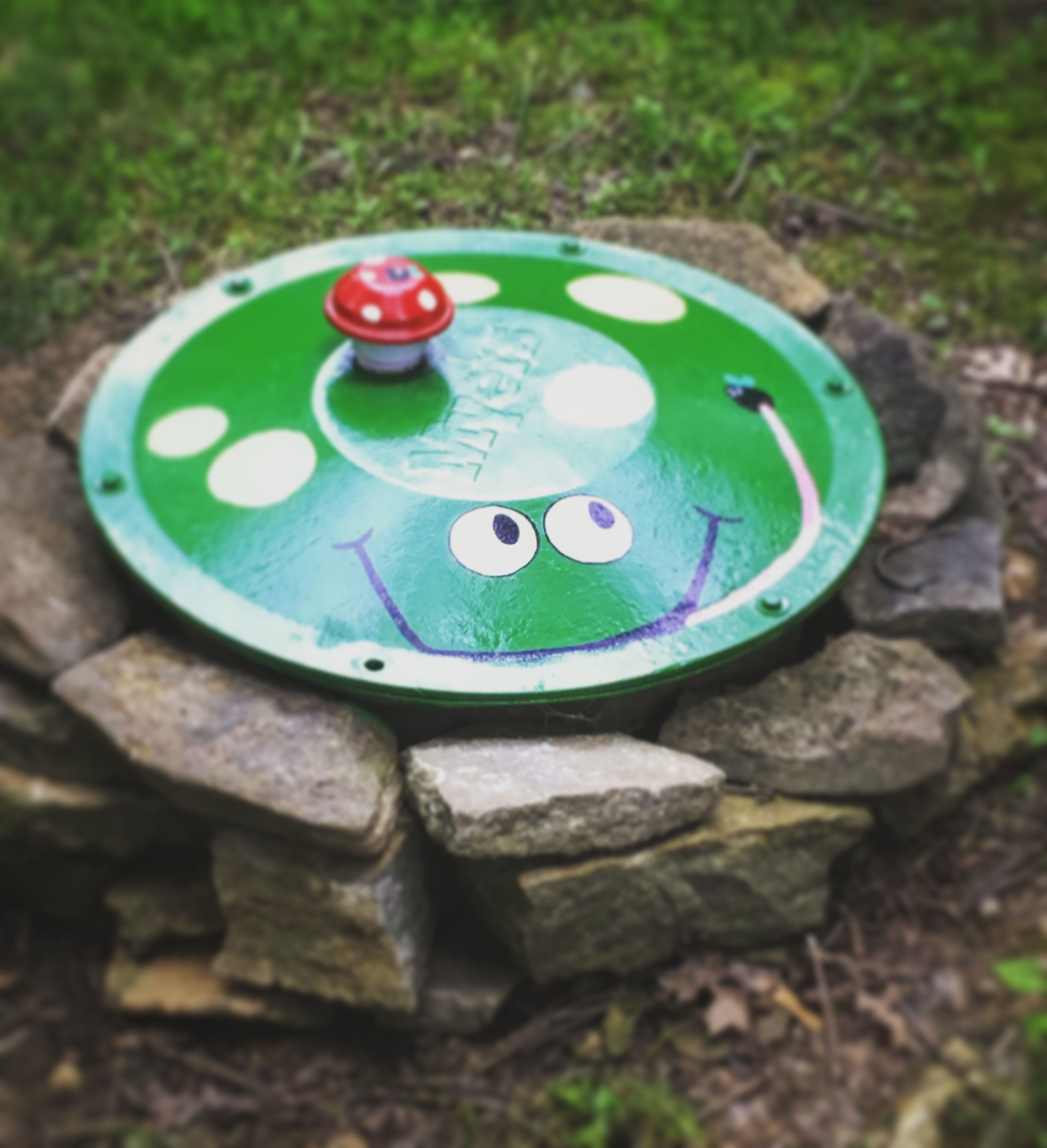 Septic tank cover got a cute makeover! Septic tank