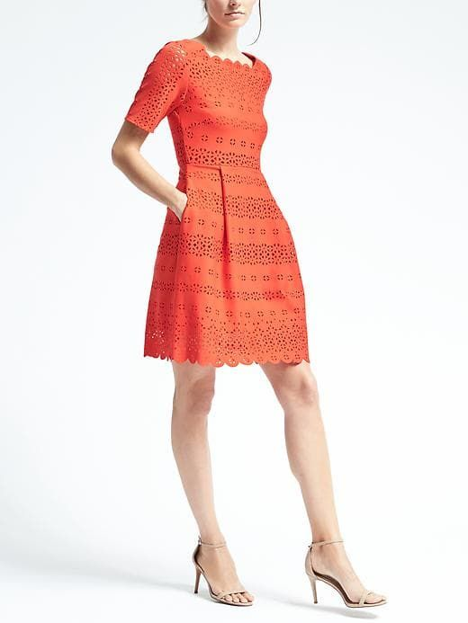 Banana Republic Lasercut Fit And Flare Dress Interview