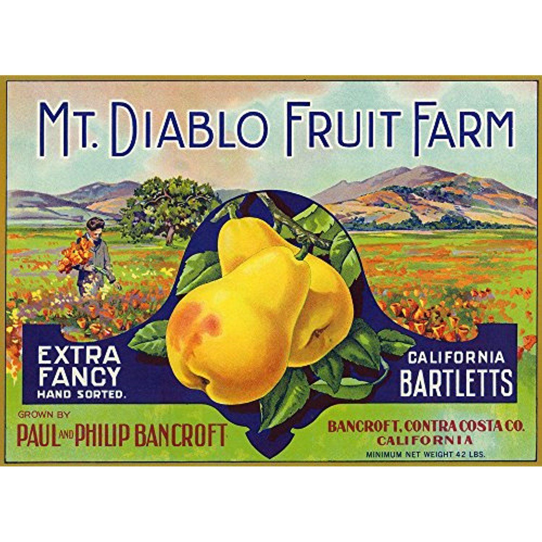 Bancroft, California - Mt. Diablo Fruit Farm Brand Pear Label (12x18 ...