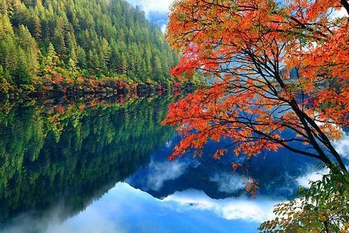A Jiuzhaigou Valley, China Fall Colors Reflection by PRASIT...