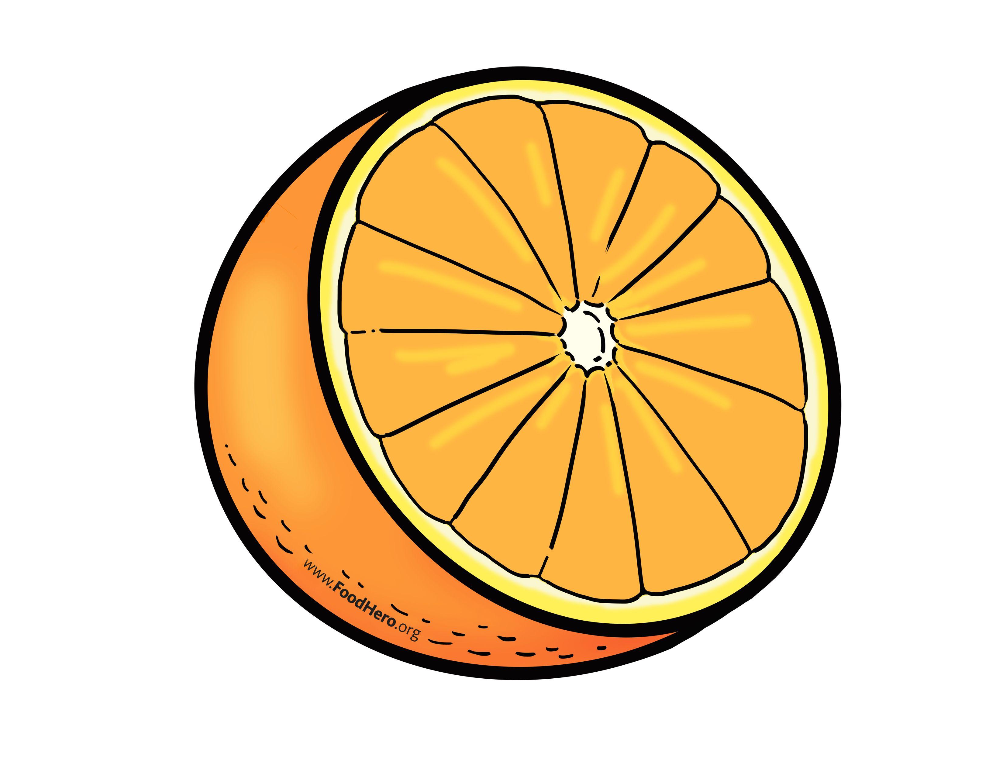 Orange Illustration Foodhero Bullentinboards Artwork Fruit Music Artwork Drawing Base Food Props