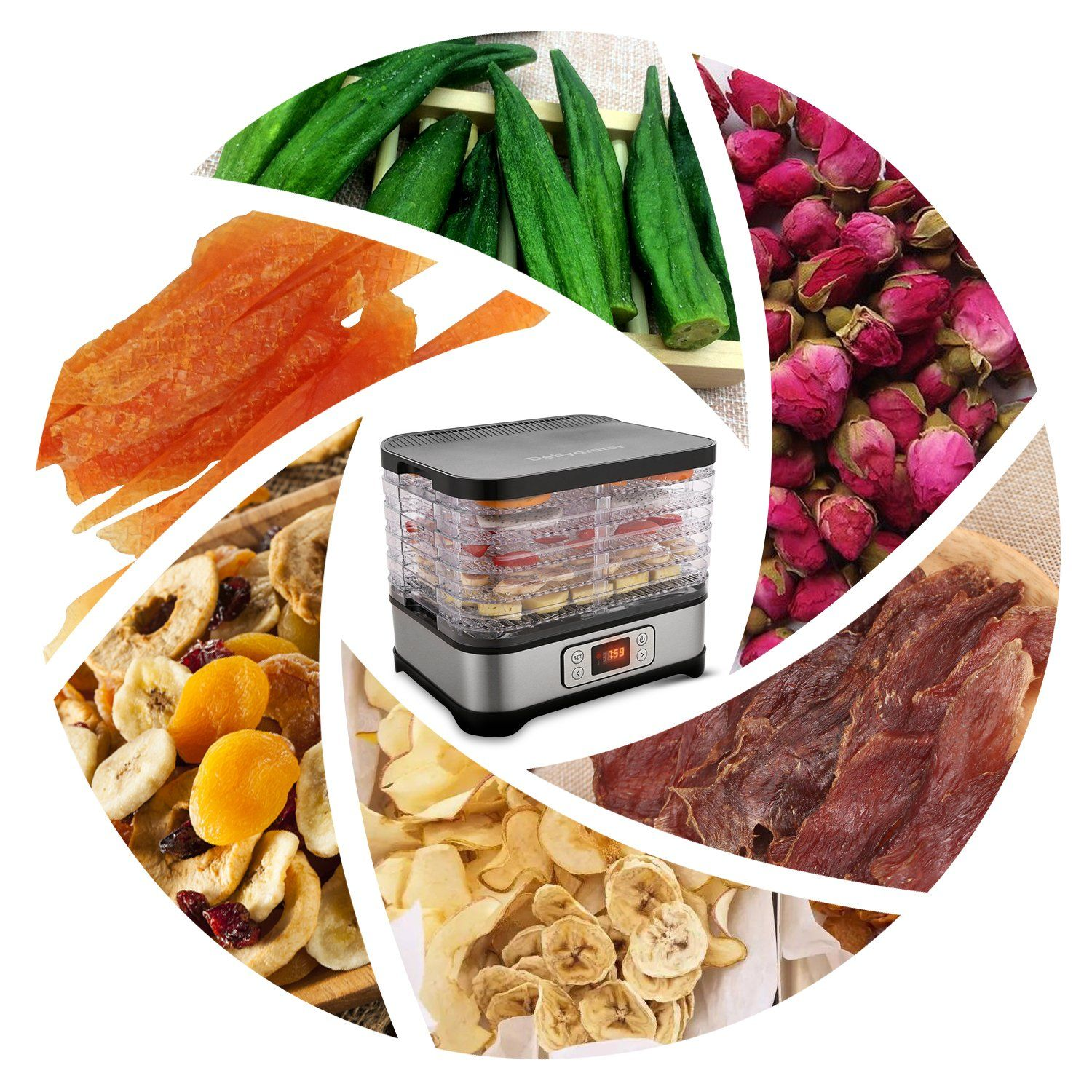 Electric food dehydrator stainless steel fruit dehydrater