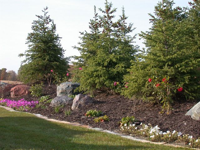 adorable berm styled landscaping