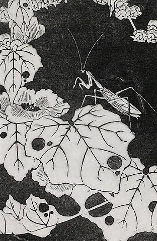 伊藤若冲『冬葵(ふゆあおい)』-拓版摺(額装もできます) - 京都 木版画の販売 Winds!芸艸堂(うんそうどう)/Ukiyo-e, Woodblock print - Winds! UNSODO