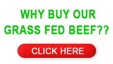 Really reasonable price grass fed beef...